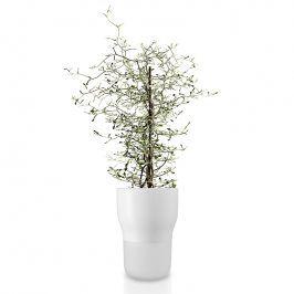 Eva Solo Samozavlažovací keramický květináč křídově bílý Ø 13 cm