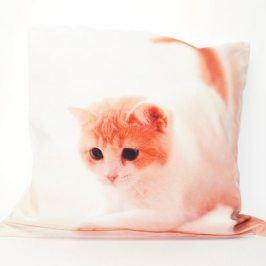 Povlak na polštářek Cat 42x42 cm Polyester