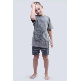 Chlapecké pyžamo Live Untamed šedé  šedá