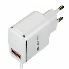 Canyon 1x USB, Lightning kabel 1m (CNE-CHA043WS)