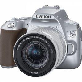 Canon 250D + 18-55 IS STM (3461C001)