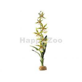 HAGEN EXO TERRA Spider Orchid 45cm