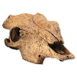 Buvolí lebka HAGEN EXO TERRA Buffalo Skull 23,5x13x7cm