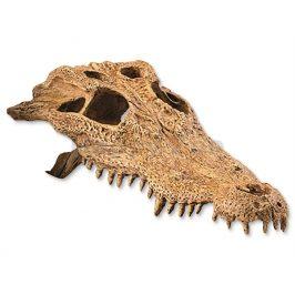 Krokodýlí  lebka HAGEN EXO TERRA 22x12x7cm