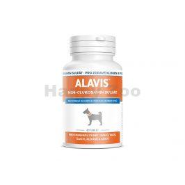 ALAVIS MSM + Glukosamin sulfát (60tbl)