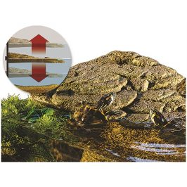 Plovoucí ostrov HAGEN EXO TERRA (L) 40,6x24x7cm
