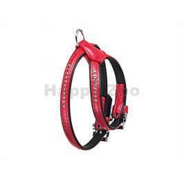 Postroj FLAMINGO Art Leather Plus Monte Carlo štrasový červený (