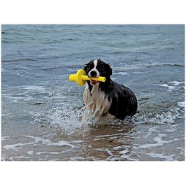 Hračka TRIXIE plast - Mot-Aqua aportovací kolík do vody plovoucí